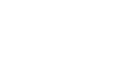 Platinum Visual Systems